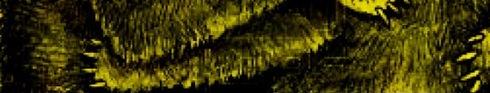 Osos Cueva Banner